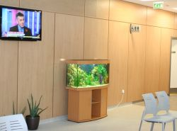 TV and Fish Tank cropped